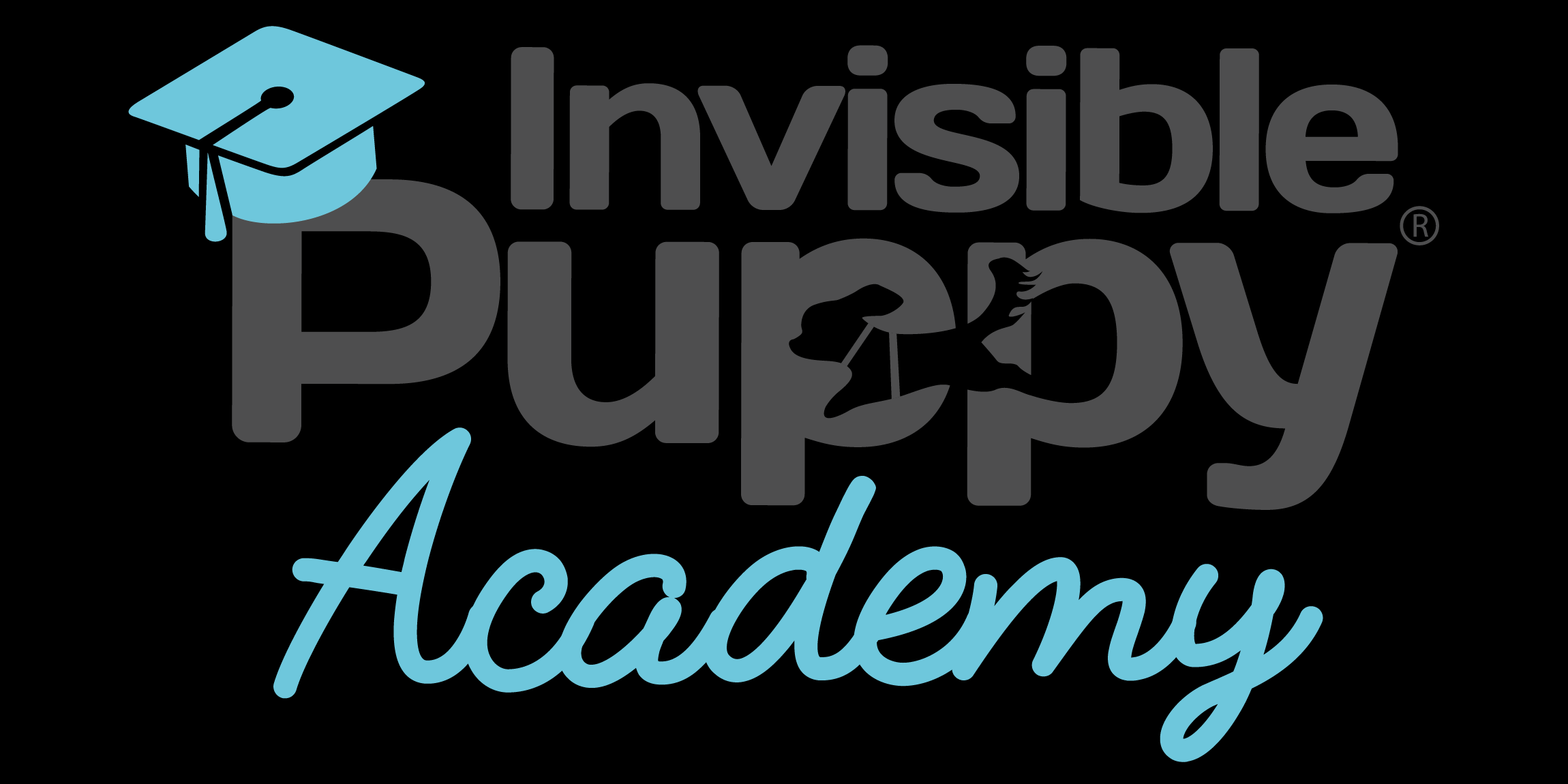 De Invisible Puppy Academy is geopend!