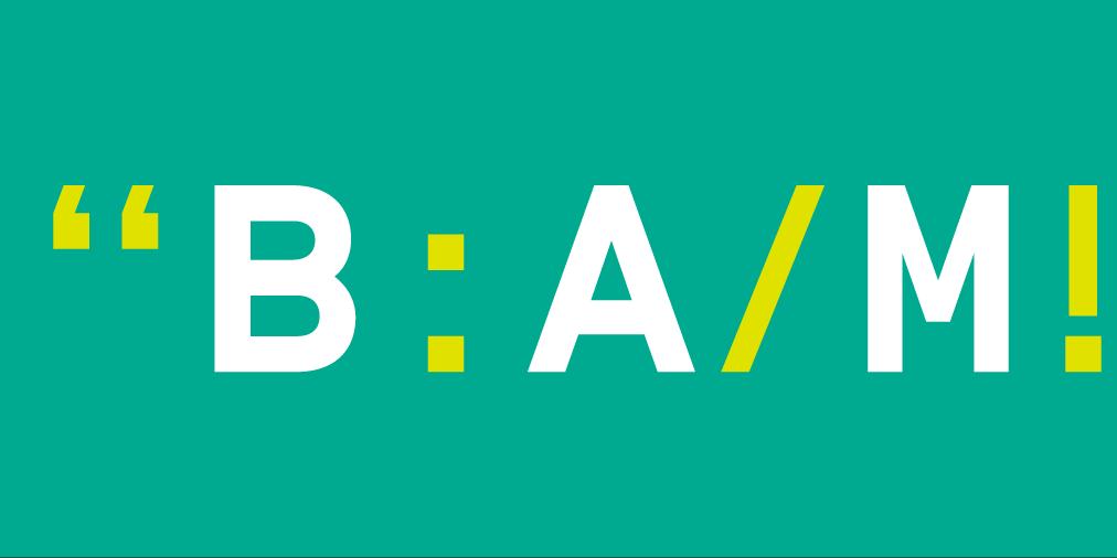 3 nieuwe Expert Hubs binnen BAM-community