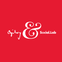 Senior Social Media Strategist (Paid Media)
